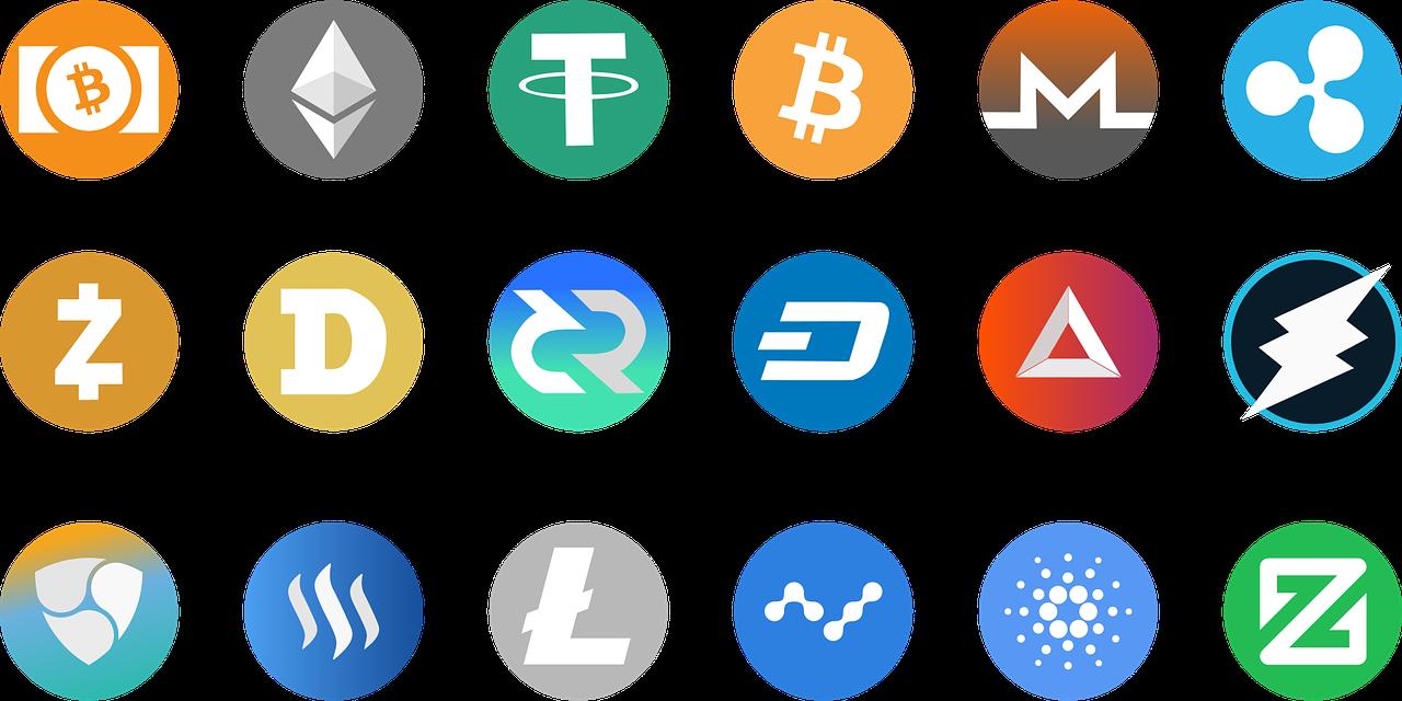 Blockchain und der Katzenboom
